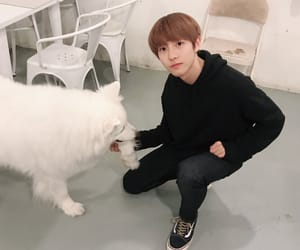 renjun and ♡nct♡ image
