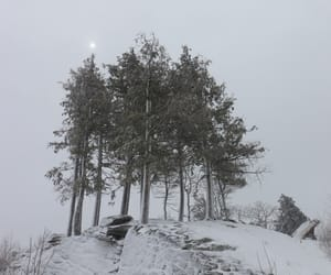 grey, landscape, and snow image