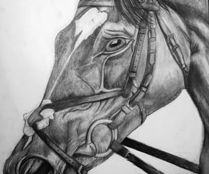 drawing, horse drawing, and horse image