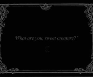 quotes, black, and creature image