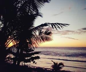 fiji, Island, and sunset image
