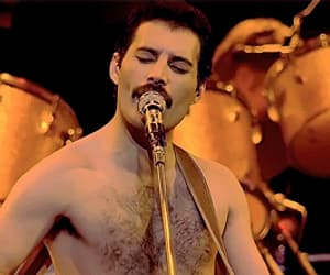 funny, gif, and Freddie Mercury image