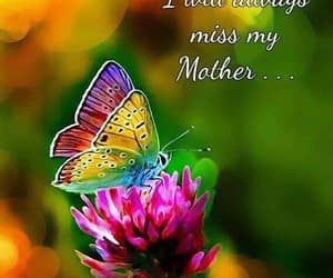 butterfly, mother, and quote image