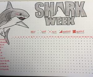 mood, period, and shark week image