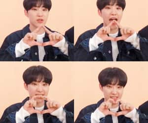 hamster, Seventeen, and soonyoung image