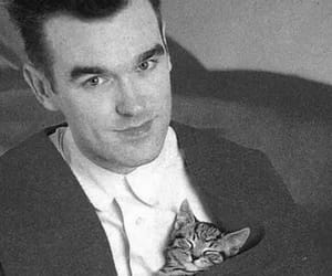 cat, morrissey, and moz image