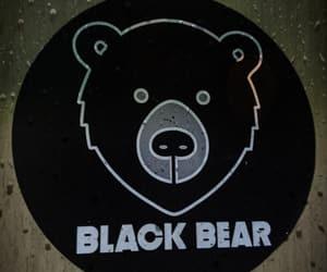 bear, black bear, and teddy image