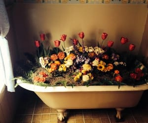 flowers, vintage, and bath image