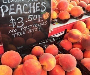 peach, orange, and food image