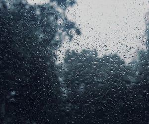 autumn, raindrops, and fall image