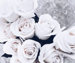 bouquets, white, and flowers image