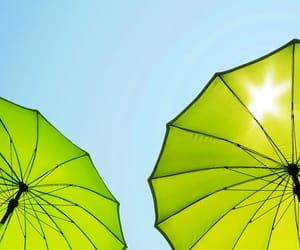 green, lime, and umbrellas image
