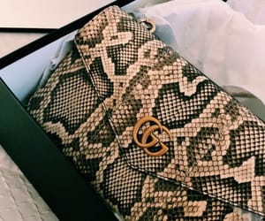 bag, gucci, and accessories image
