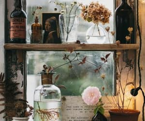 vintage, plants, and flowers image