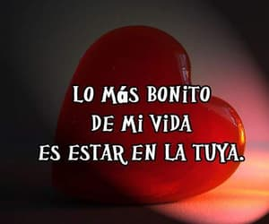 amor, felicidad, and vida image