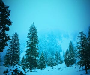 blue, california, and chilly image