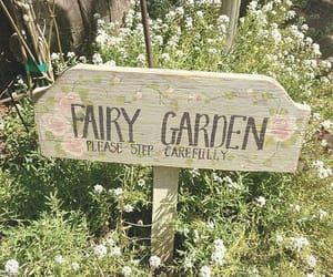 fairy, garden, and flowers image