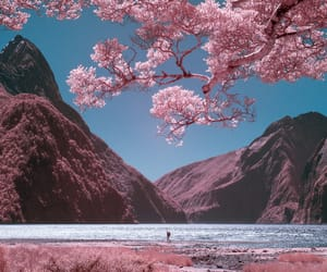 pink, mountains, and nature image
