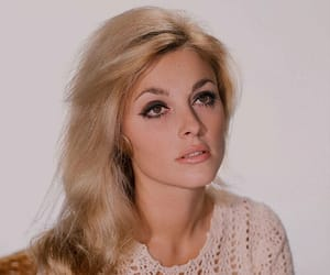 sharon tate, 60s, and vintage image