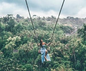 bali, forest, and swing image