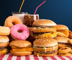 alimento, food, and hamburguer image
