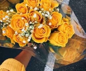 aesthetic and yellow image