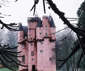 castle, nature, and pink image