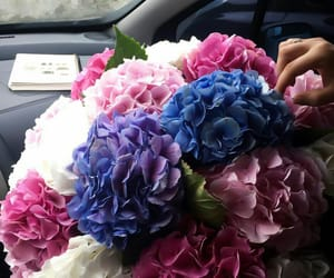 blue, fashion, and bouquet image