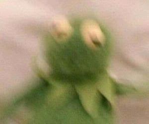 kermit, meme, and reaction image