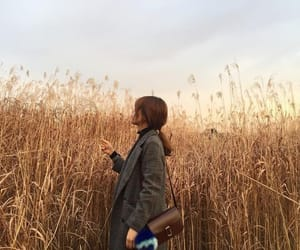 field, girl, and grain image