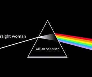 gillian anderson, sex education, and my sexuality image