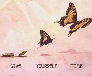 time, butterfly, and motivation image