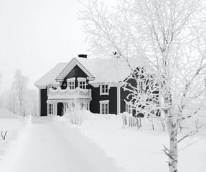 cozy, happiness, and snow image