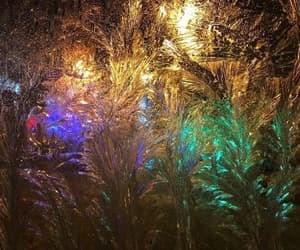 aesthetic, frost, and lights image