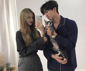 asian, cat, and ulzzang image