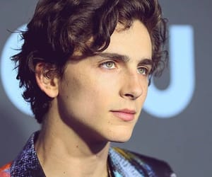 timothee chalamet, beautiful boy, and actor image