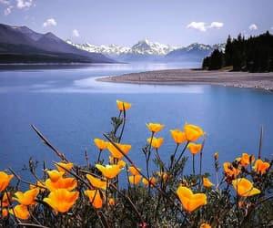 beautiful and landscape image