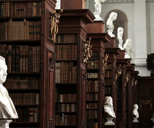 book, library, and art image