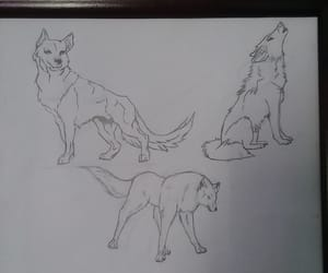 drawing, wolf, and wolves image