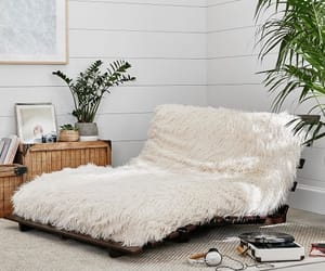 couch, cozy, and decor image