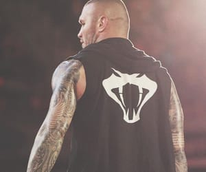 flo, wwe, and viper image