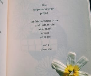 books, flowers, and forgiveness image