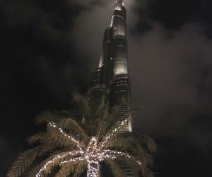 night and palm image