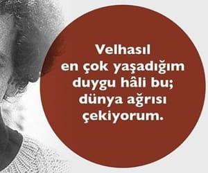 alıntı, türkçe sözler, and ali lidar image
