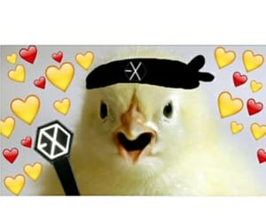 exo, heart, and exo l's image