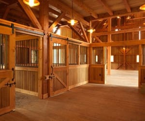 horse, stable, and barn image