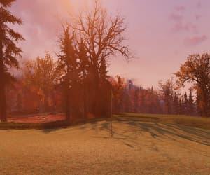 dusk, orange, and trees image