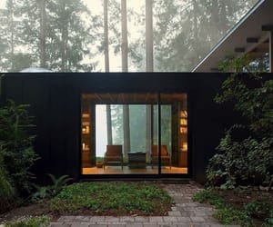 modern, woods, and architecture image