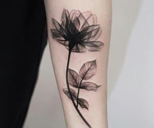 tattoo, flower, and art image