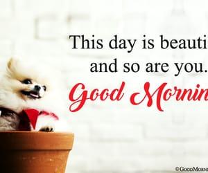 happy morning, cute morning pics, and good morning image image